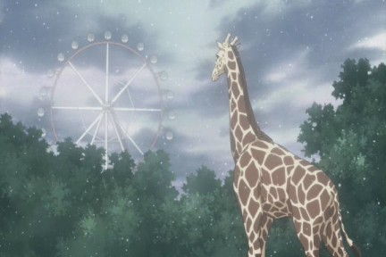 honey and clover rika harada 2 Moé and the Land of Escapism: The Reality Factor
